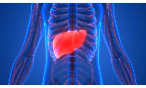 Выраженная печеночная недостаточность относится к противопоказаниям лекарства